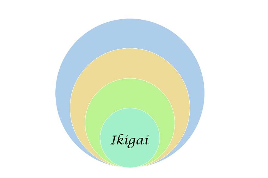 Vad ikigai är